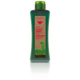 Biokera Shampoing Spécifique Cheveux Gras (300ml)