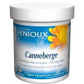 Fenioux Canneberge (Vaccinium macrocarpon)